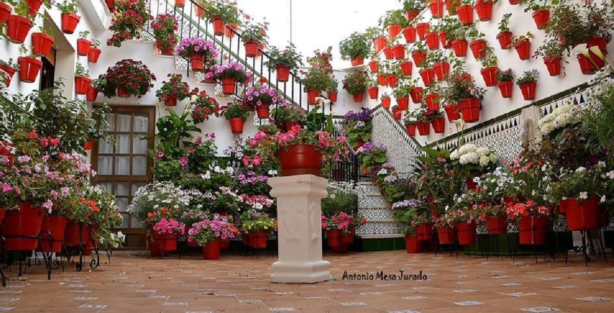 Patio Andaluz En Cabra Por Antonio Mesa Ju Fotografia Turismo De